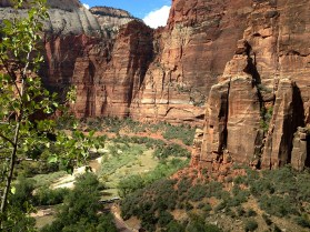 Zion National Park - photo of canyon